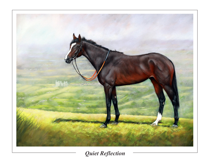 QuietReflection50x40P